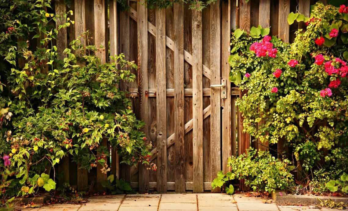 Krzewy w ogrodzie przy drewnianej bramie