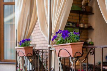 Kwiaty na balkon i taras - jesienne inspiracje