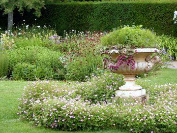 Ogród w stylu angielskim, cechy, aranżacja ogrodu