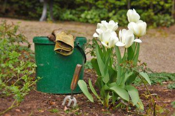Przygotuj swój ogród na wiosnę