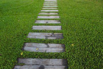 Ręczne nawożenie trawnika, zakładanie trawnika z siewu