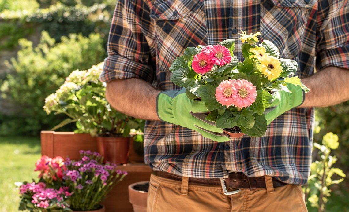 ogrodnik sadzący kwiaty