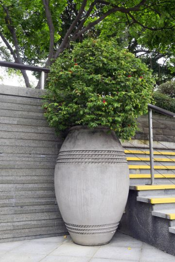 Taras z donicami - jakie rośliny sprawdzą się w takiej aranżacji?