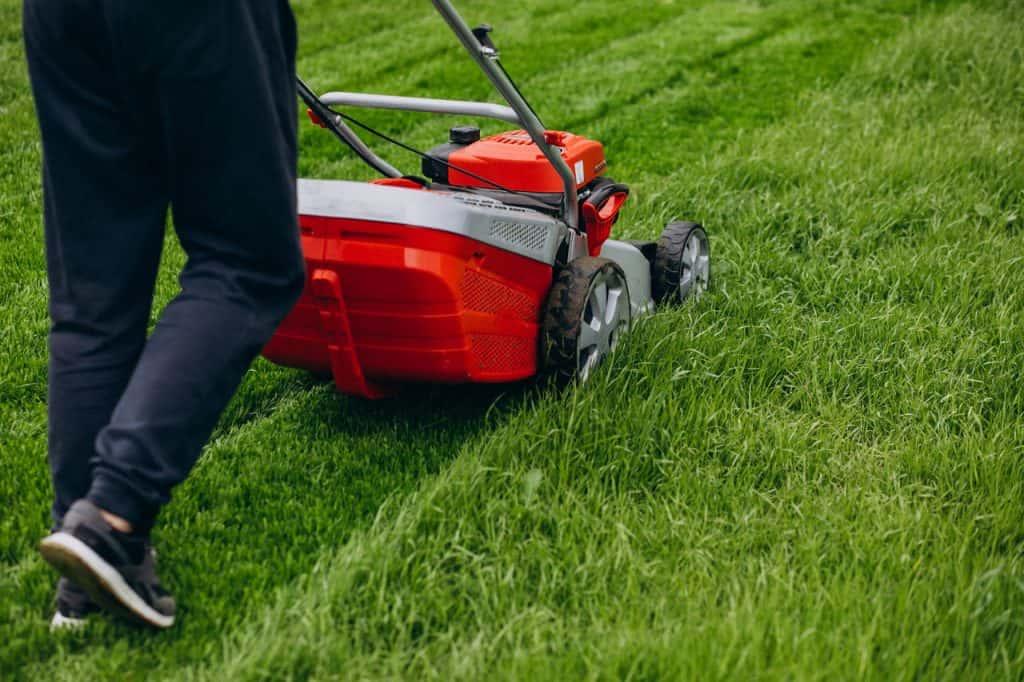 koszenie trawy kosiarką