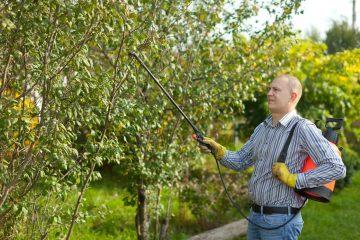 Wybieramy opryskiwacz ogrodniczy
