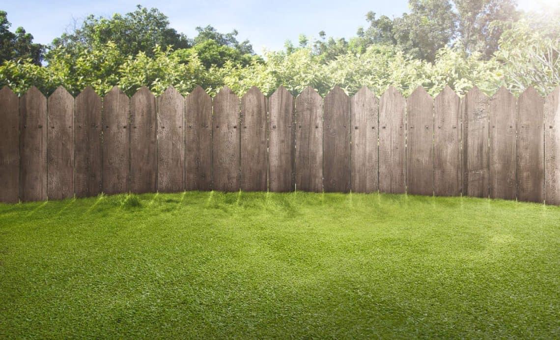 piękny trawnik i płot