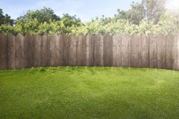 Jak dbać o przydomowy trawnik?