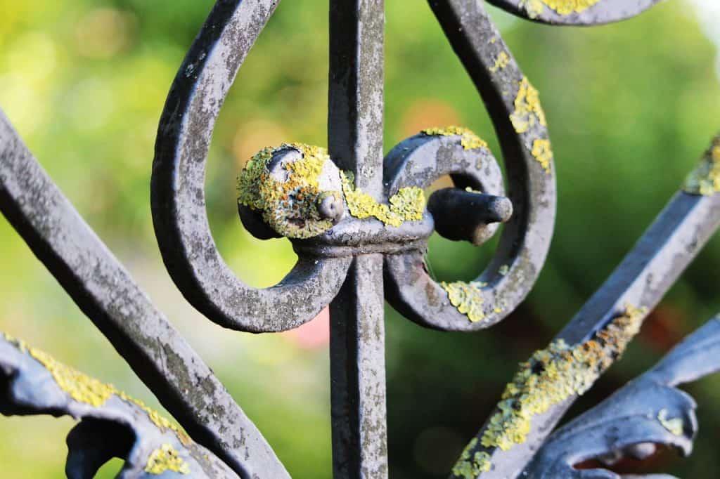 stare ogrodzenie