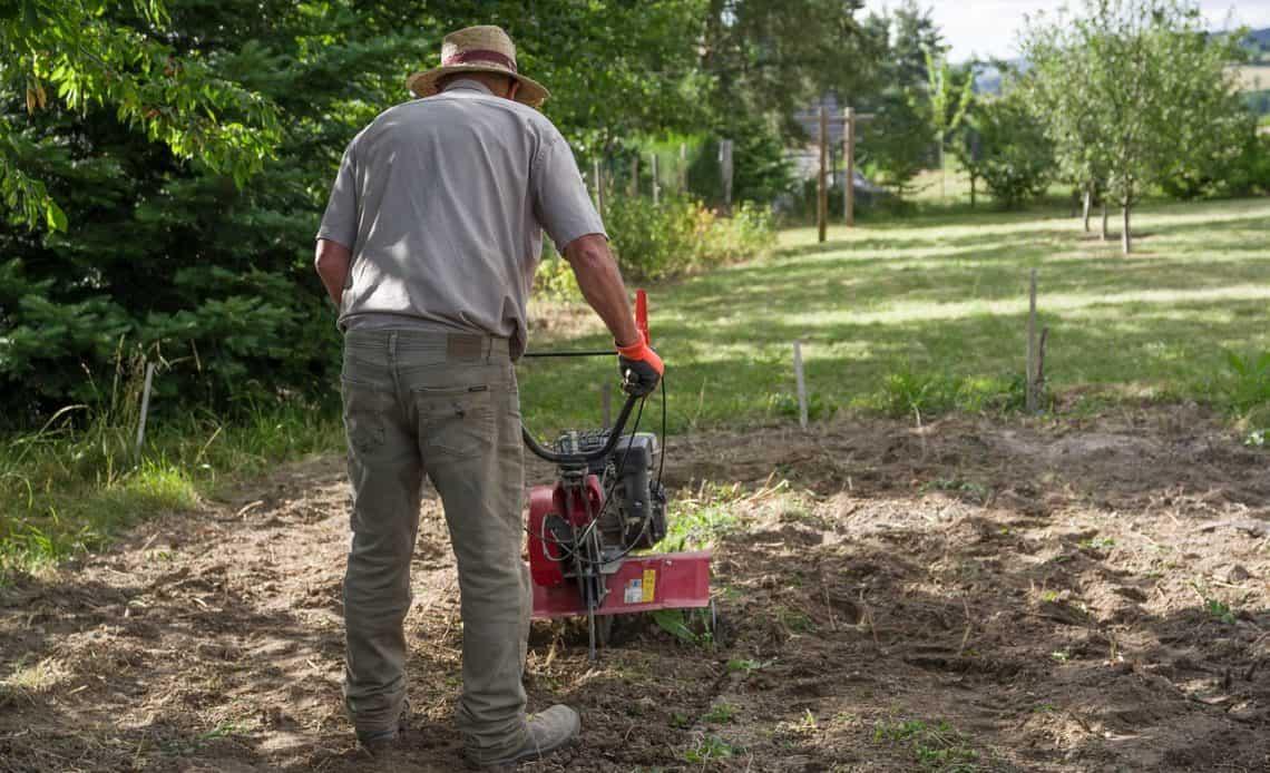 ogrodnik przygotowuje trawnik do zasiania