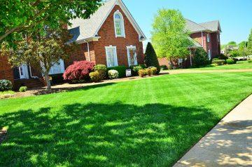 Najlepsze patenty na piękny i zielony trawnik na lata!