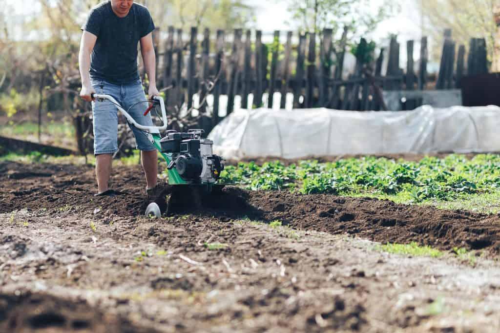 glebogryzarka w ogrodzie